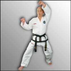 Taekwon Do Anzug Top Ten Master Instructor